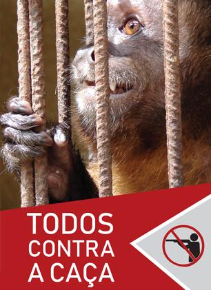 No_clima_da_caatinga_folder_todos_contra_a_caca