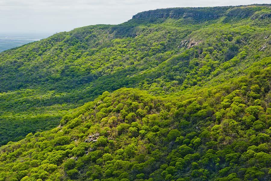 clima-caatinga-foto-1144